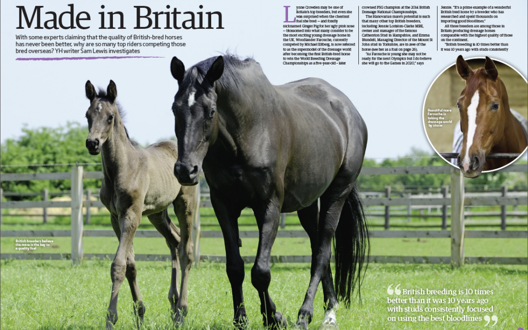 British Breeding (Your Horse magazine) 2015
