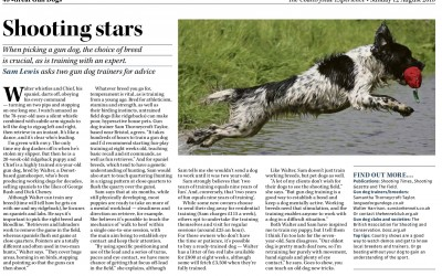 Shooting Stars, Sunday Telegraph, August 2018 Countryside Supplement